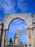 Arches of Qala'At Samaan, Ruined Basilica Built Around Pillar of St. Simeon, Halab, Syria Photographic Print by Tony Wheeler