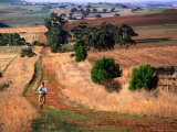 Cyclist on Dirt Road in Countryside Near Kapunda, Barossa Valley, Australia Photographic Print by Trevor Creighton