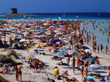 Crowds in Spiaggia Di Pelosa, Stintino, Sardinia, Italy Photographic Print by Dallas Stribley