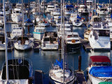 Boats at Marina of Fisherman's Wharf, San Francisco, California, USA Photographic Print by Richard I'Anson