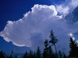 Storm Clouds (Cumulonimbus Cluds) Over Treeline, Chamonix, Rhone-Alpes, France Photographic Print by Gareth McCormack