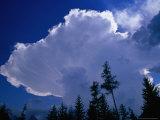 Storm Clouds (Cumulonimbus Cluds) Over Treeline, Chamonix, Rhone-Alpes, France Photographic Print by Gareth McCormack