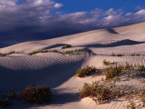 Dunes of the Great Australian Bight, Australia Photographic Print by Diana Mayfield