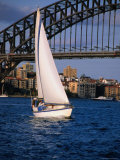 Yachting Below the Harbour Bridge, Sydney, Australia Photographic Print by Greg Elms