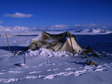 Nomadic Yak Herder's Tent in Snow on Tibetan Plateau, Langtang Himal, Tibet Photographic Print by Grant Dixon