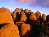 Dolerite Boulders at Mt. Wellington, Tasmania, Australia Photographic Print by Gareth McCormack