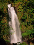 Waterfall in Lush Environment, Morne Trois Pitons National Park, Trafalgar Falls, Dominica Photographic Print by Michael Lawrence
