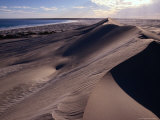 Sand Dunes on the Great Australian Bight, Australia Photographic Print by Diana Mayfield