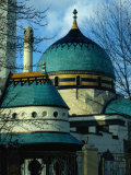 Zsolnay Tiled Elephant House at Budapest Zoo, Budapest, Hungary Photographic Print by David Greedy
