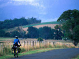 Cyclist on the Tasmanian Trail, an Overland Trail from Devonport to Hobart, Australia Photographic Print by Trevor Creighton