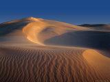 Sand Dunes, Eucla National Park,Western Australia, Australia Photographic Print by Richard I'Anson