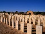 The Australian War Cemetery - Tobruk, Cyrenaica, Tobruk, Libya Photographic Print by Patrick Syder