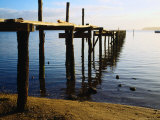 Jetty in St. Georges Bay St. Helens, Tasmania, Australia Photographic Print by Glenn Beanland