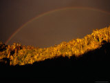 Stormy Sky and Rainbow Over Forest, Cani Sanctuary, Chile Photographic Print by Woods Wheatcroft