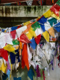 Buddhist Prayer Flags Around the Bo Tree, Anuradhapura, North Central, Sri Lanka Photographic Print by Dallas Stribley