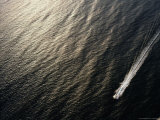A Power Boat Streaks Across Sunlit Waters off Surfers Paradise, Queensland, Australia Photographic Print by Richard I'Anson