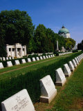 Headstones from the Two World Wars at Zentralfriedhof (Central Cemetery), Vienna, Austria Photographic Print by Diana Mayfield