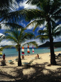 Beach at Catseye Bay on the Great Barrier Reef,Hamilton Island, Queensland, Australia Fotografie-Druck von Richard I&#39;Anson