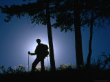 Backlit Hiker Near Trees, Waterton Lakes National Park, Alberta, Canada Photographic Print by Gareth McCormack