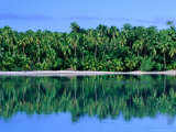 Palm Trees on Aitutaki Lagoon, Aitutaki, Southern Group, Cook Islands Photographic Print by John Banagan