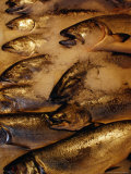 Fish on Ice at Pike Place Market, Seattle, USA Fotografie-Druck von Richard I&#39;Anson