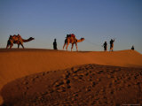 Camels and Their Herders in the Sam Desert, Jaisalmer, Rajasthan, India Photographic Print by Jane Sweeney