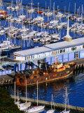 Chaeffers Marina at Oriental Bay, Wellington, Wellington, New Zealand Photographic Print by Paul Kennedy