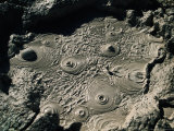 Bubbling Mud from Geysers Near Sol De Manana, Sol De Manana, Bolivia Photographic Print by Woods Wheatcroft