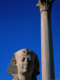 Granite Column of Pompey's Pillar - Alexandria, Egypt Photographic Print by Patrick Syder