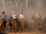 A Group of Stockmen Mustering Cattle on New Dixie Station, Queensland, Australia Photographic Print by Oliver Strewe
