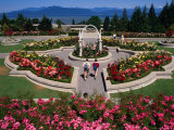 Couple Walking Through University of British Columbia Rose Garden, Vancouver, Canada Photographic Print by Rick Gerharter