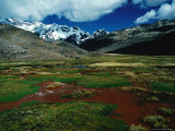 Stream Passing Over Flat Grassland, with Snow-Capped Mountains in Distance, Peru Photographic Print by Richard I'Anson