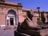 Sphinx Guarding Entrance to Egyptian Museum, Cairo, Egypt Photographic Print by Wayne Walton