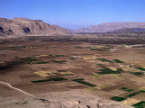 Overhead of Plain Cultivated with Crops, Rada, Yemen Photographic Print by Bethune Carmichael
