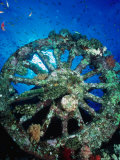 A Locomotive Wheel is One of the Remains of the Wreck of the Numidea, Sank in 1901, Egypt Photographic Print by Casey Mahaney