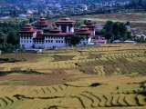 Fields with Trashichhoe Dzong in Background, Thimphu, Bhutan Photographic Print by Nicholas Reuss