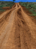 Dirt Road on Easter Island, Chile Photographic Print by Brent Winebrenner