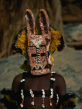Masked Dancer at the Dama Festival in Dogon Country, Ireli, Mopti, Mali Photographie par Ariadne Van Zandbergen