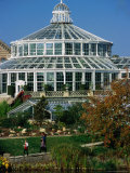 Palm House or Palmehus, Greenhouse in the Botanic Gardens, Copenhagen, Denmark Photographic Print by Anders Blomqvist