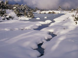 Snow on Franklin River, Cradle Mountains, Lake St. Clair National Park, Tasmania, Australia Photographic Print by Rob Blakers