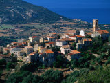 Hillside Village, Aregno, Corsica, France Photographic Print by David Tomlinson