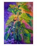 Sunset Fig Tree Giclee Print by Victoria Frazior