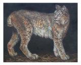 Siberian Lynx Giclée-Druck von Dean Vigyikan