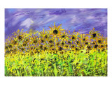 Sunflowers In The Wind Photographic Print by Ron DeMore