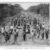 Cape-To-Cairo Railway Clearing the Congo Forest for the Trans-Continental Rail Link Photographic Print