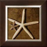 Starfish Prints by Caroline Kelly