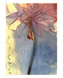Pink Lotus Giclee Print by Erik Reinert