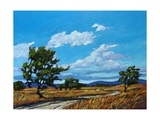 Windy Day In Colorado Giclee Print by Patty Baker