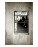 Mausoleum Window Photographic Print by Eli Warren