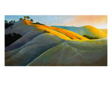 Runners In Poly Canyon Giclee Print by Dan Berkeland